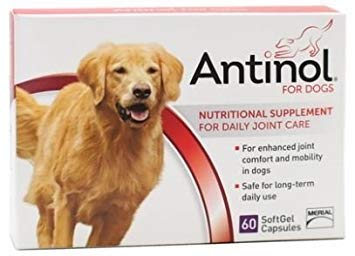 Antinol Joint Care Supplement For Dogs 60 Count by Vetz Petz Antinol