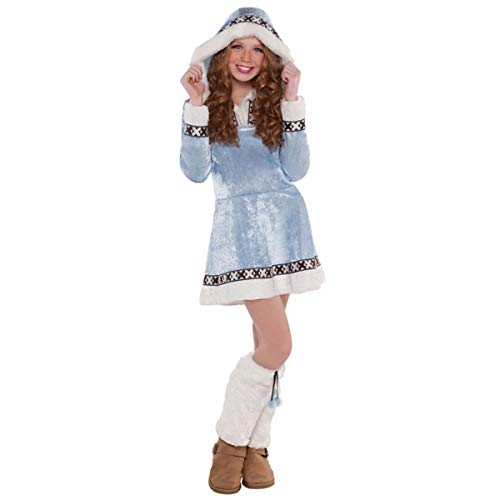 Arctic Princess Costumes - Girls Arctic Princess Costume - Medium