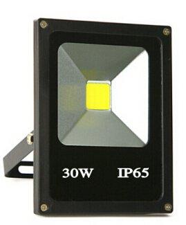 Cheap Trendmart® 30w Cold White Input Voltage Dc/ac 12v-24v Led Flood Light Outdoor Landscape Lamp (Black) (30 Watts)
