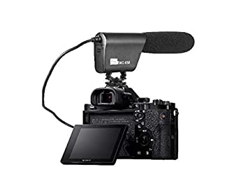 Pixel MC650 - Micrófono de Video Profesional para cámaras réflex ...