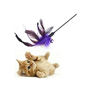 The DDS Store Cat Long Interactive Toy Feather Teaser Wand with Bell – Colour May Vary on a Stick
