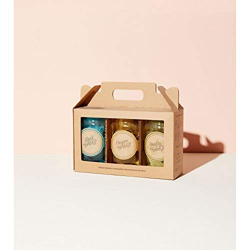 Modern Sprout Garden Jar Set of 3 - Italian Herb Kit