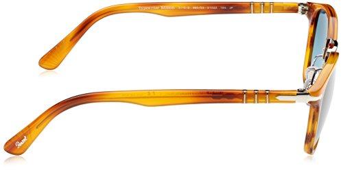Adulto Bluebluepolar Sol de Persol Marrón Gafas Unisex Brown q4wvI