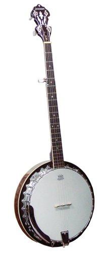 UPC 840246007452, New Johnson Planetary 5 String Banjo Model JB110