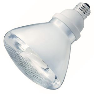 Philips 157156 EL/A PAR38 23W Marathon Reflector Flood Compact Fluorescent Light Bulb - Philips Reflector