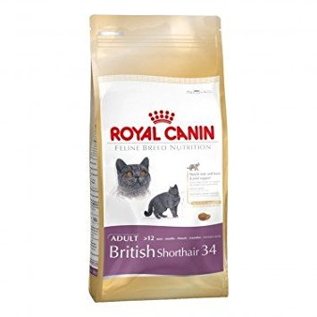 Royal Canin British Shorthair - Comida para gatos (2 kg)