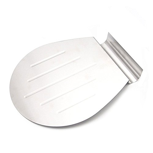 Stainless Steel Cake Shovel 10 Inches Metal Cake Lifter