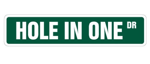 - Funny Decorative Signs Hole In One Street Sign Golfer Golf Clubs Balls Gift Lover Widow Player Play Metal Aluminum Sign for Garages, Livingroom