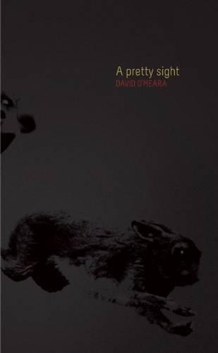 A Pretty Sight -  David O'Meara, Paperback