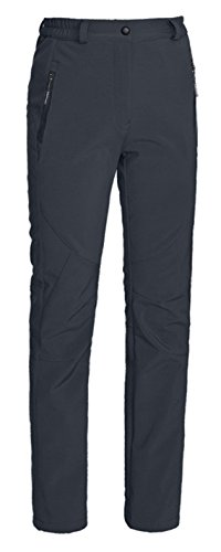 ZSHOW Women's Waterproof Mountain Fleece Windproof Ski Pants(Grey, Small)