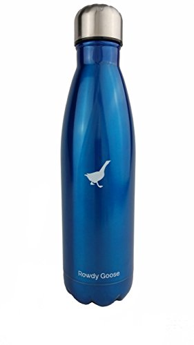 Rowdy Goose 17 oz. Insulated Stainless Steel Water Bottle (Blue)