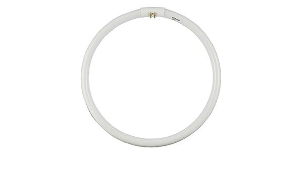 Watts: 40W Color FCT5-40W-WW Warm-White 3000K Type: T5 Circular Fluorescent