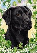 Dog Breed Garden (Black Labrador Retriever by Tamara Burnett St. Patricks Day Garden Dog Breed Flag 12'' x 17'')