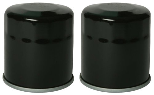 Purolator ML16821 Black Motorcycle Oil Filter, Pack of 1 - Mobil Oil Arctic