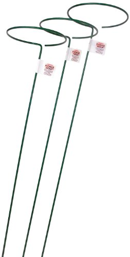 Bosmere E553 48-Inch Plant Stem Support with 6-Inch Hoop, 3-Pack