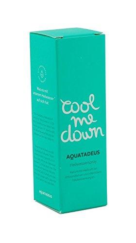 aquatadeus Cool Me Down Heil Agua Spray, 40ml
