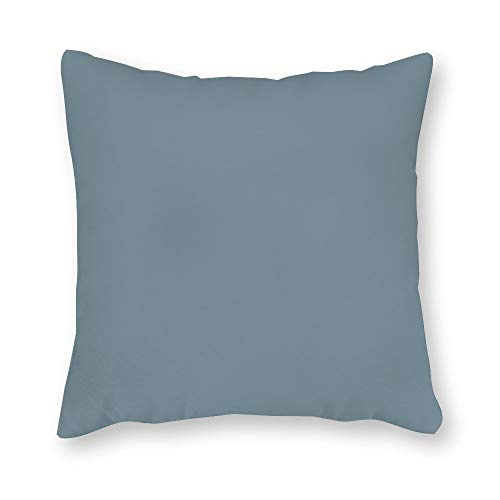 - FabricMCC Robert Allen Short Plush Slub Rain Pillow Cover, Seafoam Blue Throw Pillow, Cool Ocean Blue Accent Pillow, Solid Rain Collection Pillow Cover 20 x 20 Inch