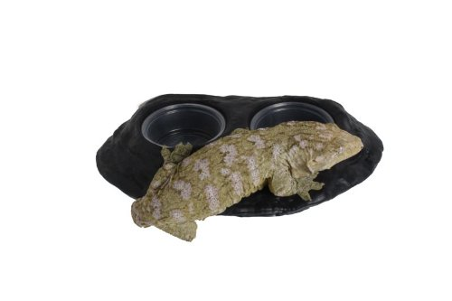 Ultimate-Gecko-Ledge-Magnetic-Gecko-Diet-Feeder