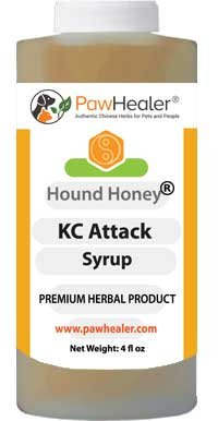 PawHealer® Kennel Cough Syrup: Hound Honey - 5 fl oz - Natural Remedy for Kennel Cough & Dogs Love The Taste! (Best Home Remedies For Asthma Attacks)