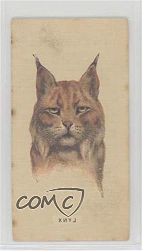Lynx Ungraded COMC Good to VG-EX (Trading Card) 1931 Player's Wild Animals' Heads by Arthur Wardle - [Base] - Transfers #LYNX from Unknown