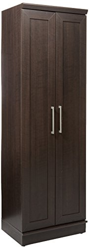 Sauder HomePlus Basic Storage Cabinet, Dakota Oak