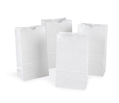 White Luminary Bags Bulk - Rainbow PAC72020 Kraft Bag, White, 6