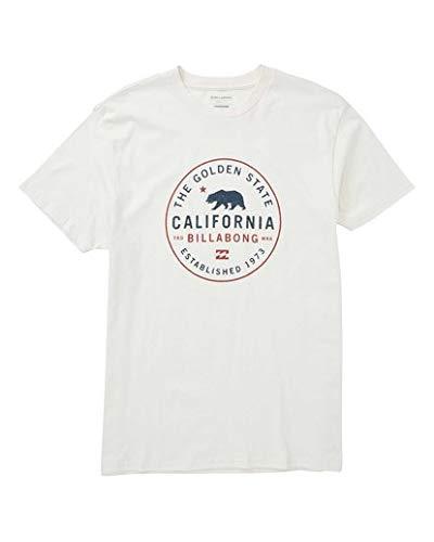 Billabong Men's Golden State T-Shirt Rock Small from Billabong