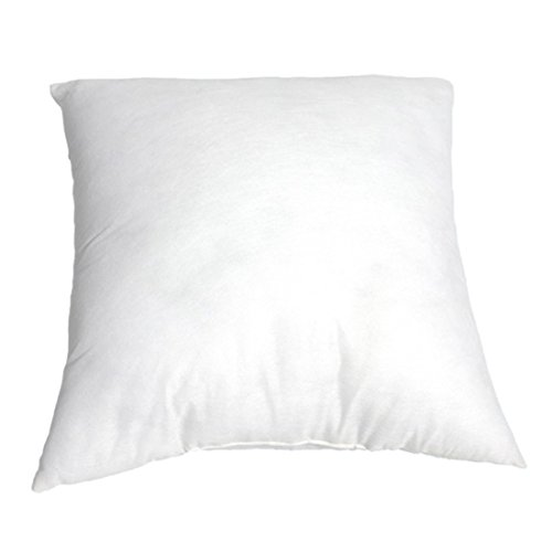 Oraunent Square Pillow Insert Pillows Core Cushion White Comfortable Home Sofa Chair Car Bedding (Puffy Inserts)