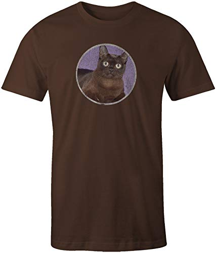 (A Bombay Black Cat Short Sleeve T-Shirt)