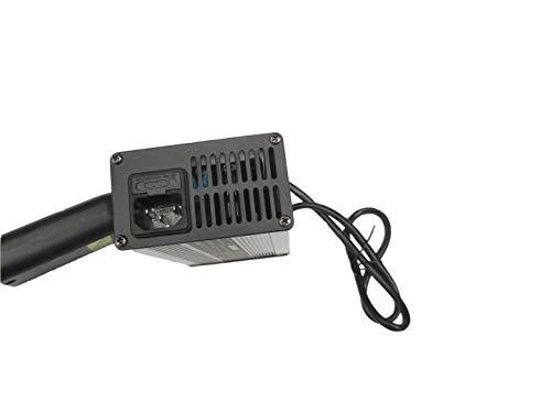 Blue Elf D Style EZ-Go Powerwise 36 Volt TXT Medalist Golf Cart Battery Charger 36V by Blue Elf (Image #2)