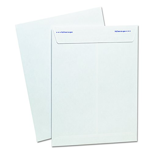 Ampad 73127 Fastrip Security Envelope product image