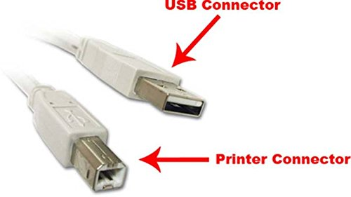 Terabyte USB 2.0 Highspeed A Male to B Male Printer Cable (5 Meter)