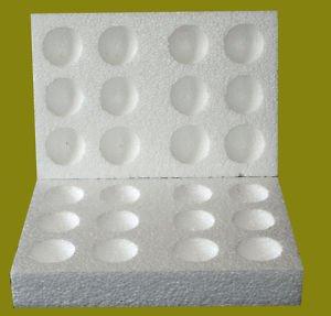 Amazon.com: 25 x12 agujero poliestireno huevo cajas Eclosión ...