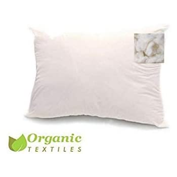 Amazon Com Bean Products Standard Organic Kapok Pillow
