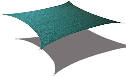Alion Home 10' x 10' Waterproof Woven Sun Shade Sail in Vibrant Colors (Forest Green) ()
