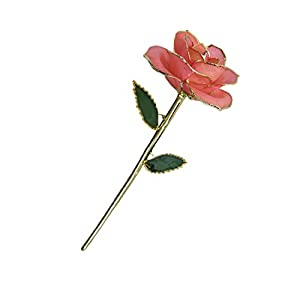 TOMSKY LIMITED 24K Gold Dipped Pink Rose, Long Stem Real Fresh Natural Rose Trimmed in Yellow Gold in Brown Gift Box Best Gift for Mother's Day Valentine's Day Anniversary(Pink) 89