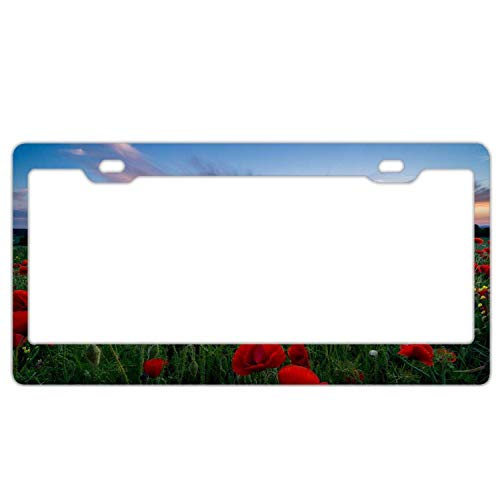 Evelynmat Design License Plate Frame with Vintage Flower, Poppies Red Flower Field (Vintage Poppy Plates)