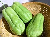 Fresh Chayote (3 Lbs) by Tropical Importers