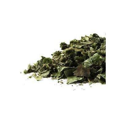 Bulk Herbs: BlackBerry Leaf (Organic): Health & Personal Care