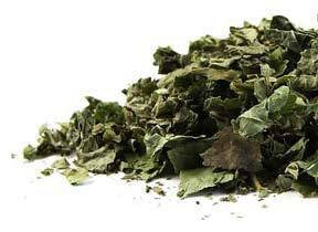 Bulk Herbs: Blackberry Leaf (Blackberry Leaf Tea)