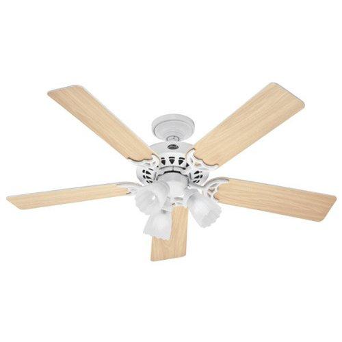 "Hunter Fan 52"" Architect Series Plus, White, 53236"