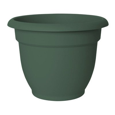 Round Pot Planter Color: Thyme Green