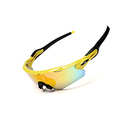 (Two tigers Polarized Sport SunglassesCycling Glasses(5Lens))