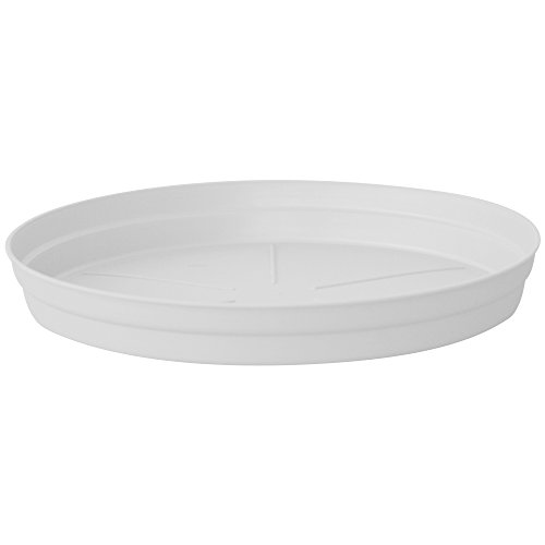 Top 10 Plant Saucers With Drains Of 2019 No Place Called