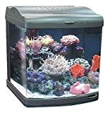 JBJ/Transworld Aquatics JBJ 24 Gallon Nano-Cube Deluxe Aquarium 2X36W Compact Fluorescents & LED Moonlights