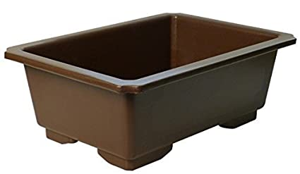 Dallas Bonsai Single Pot By Dallas Bonsai