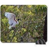 Aussie birds Mouse Pad, Mousepad (Birds Mouse Pad)