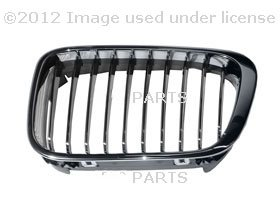 BMW OEM Grill / Grille LEFT for 320i 323i 325i 325xi 328i 330i 330xi by URO (Bmw 323i Grille)