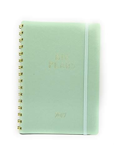 12 Month Weekly/Monthly Spiral Planner by FRINGE STUDIO 6'' X 9'' Jan 19 - DEC 2019 (Light Teal) ()