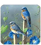 Coasters Set of Four - Bluebirds in Purple Meadow - Hautman Brothers & Legacy